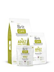 Brit Care Adult Small Breed Lamb & Rice 7,5 kg hind ja info | Brit Care Adult Small Breed Lamb & Rice 7,5 kg | kaup24.ee