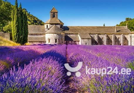 Pusle Puzzle Castorland Lavender Field in Provence, France, 1000 tk hind