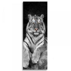 3D seinanagi Tiger
