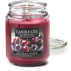 Lõhnaküünal Candle-lite Everyday Juicy Black Cherries
