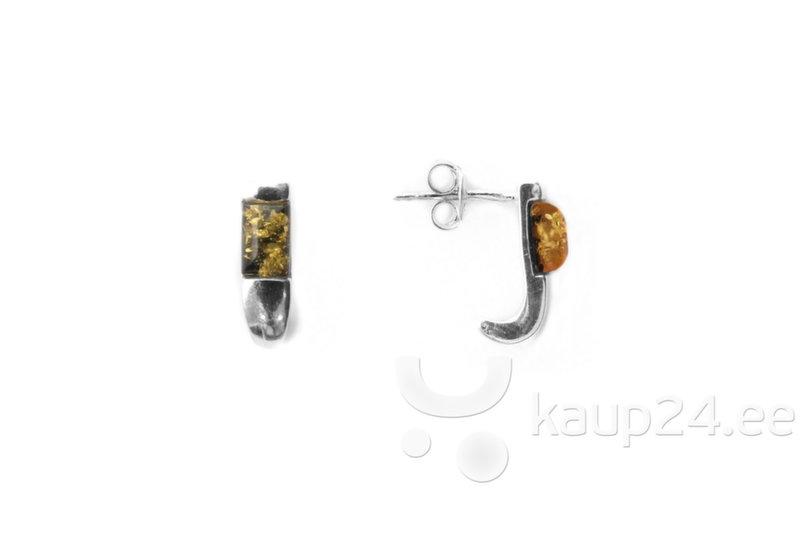 Naiste kõrvarõngad hõbedast ja merevaigust XIV, roheline цена и информация | Kõrvarõngad | kaup24.ee