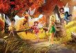 Fototapeet Disney fairies, 360cm x 254cm