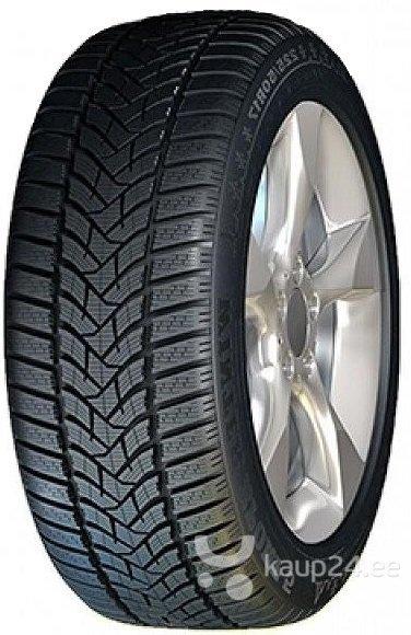 Dunlop SP Winter Sport 5 195/55R15 85 H цена и информация   Rehvid   kaup24.ee