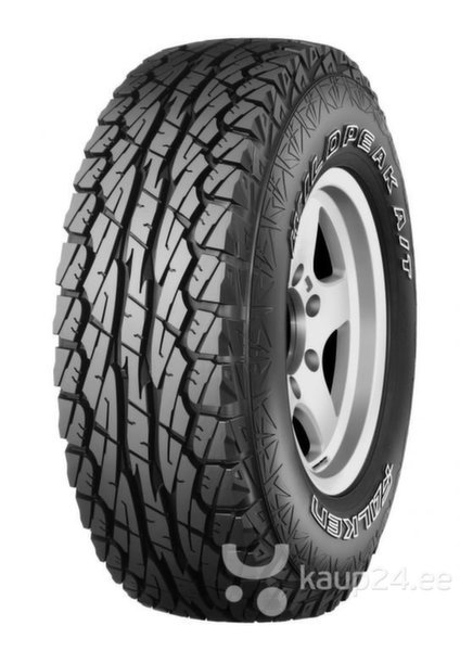 Falken WILDPEAK A/T AT01 245/65R17 111 H XL цена и информация | Rehvid | kaup24.ee