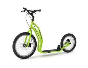Tõukeratas YEDOO MEZEQ, roheline hind ja info | Tõukerattad | kaup24.ee