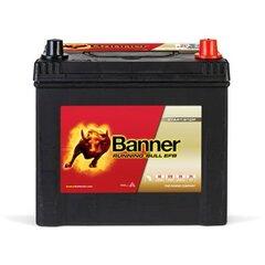 Баннер EFB 65Ач 550A + - аккумулятор 12В, 233x173x203 / 225мм цена и информация | Баннер EFB 65Ач 550A + - аккумулятор 12В, 233x173x203 / 225мм | kaup24.ee