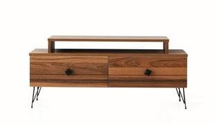 TV laud Kalune Design Kardelen, pruun hind ja info | TV alused | kaup24.ee