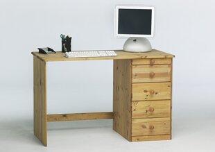 Kirjutuslaud Steens Kent 271, pruun hind ja info | Arvutilauad, kirjutuslauad | kaup24.ee