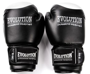 Poksikindad Evolution RB21