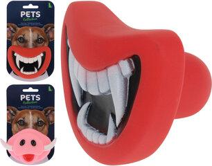 Mänguasi koerale, mask hind ja info | Mänguasjad koertele | kaup24.ee
