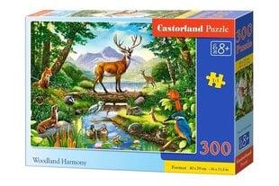 Pusle Castorland Woodland Harmony, 300 tk. hind ja info | Pusled | kaup24.ee