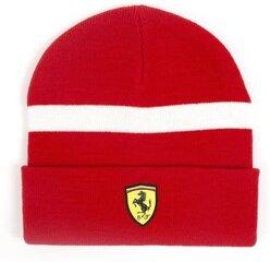 Meeste kootud müts FERRARI, punane hind ja info | Meeste sallid, mütsid ja kindad | kaup24.ee