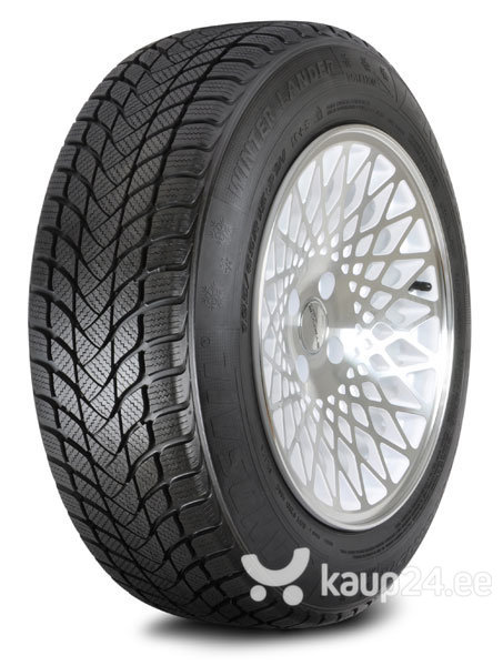 Landsail WINTER LANDER 205/50R17 93 H XL цена и информация | Rehvid | kaup24.ee