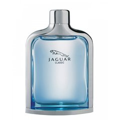 Tualettvesi Jaguar New Classic EDT meestele 100 ml