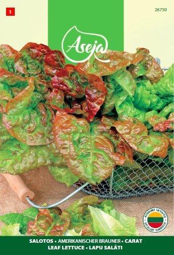 Lehtsalat Americanischer Brauner, ASEJA, 2g, 26750( 1 ) цена и информация | Köögiviljade seemned | kaup24.ee