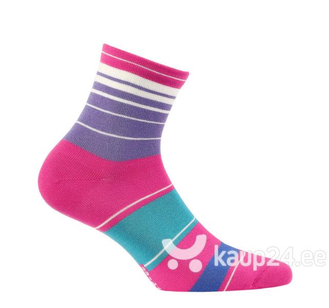 Naiste sokid WOLA, roosa4 цена и информация | Naiste sukkpüksid, sokid ja retuusid | kaup24.ee