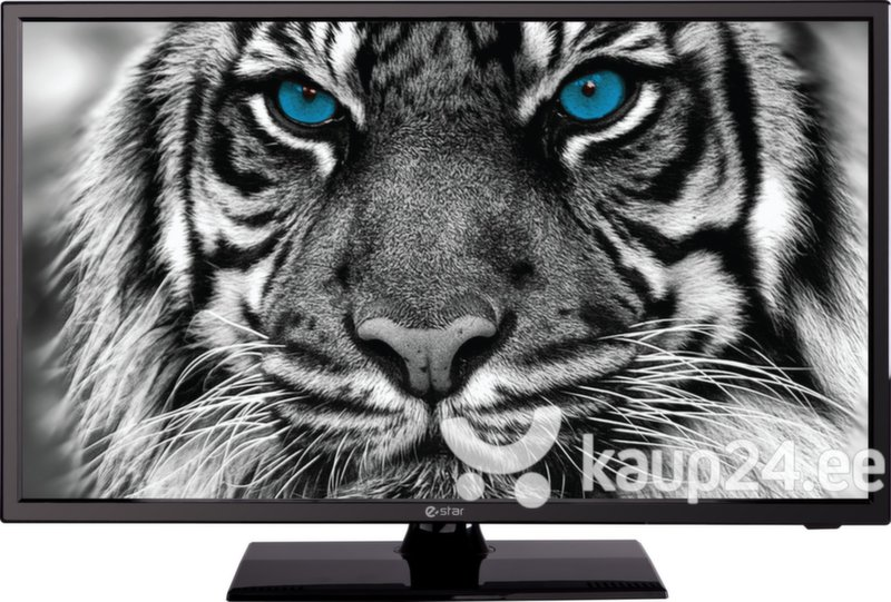Teler TV eSTAR LED19D1T1 цена и информация | Telerid | kaup24.ee