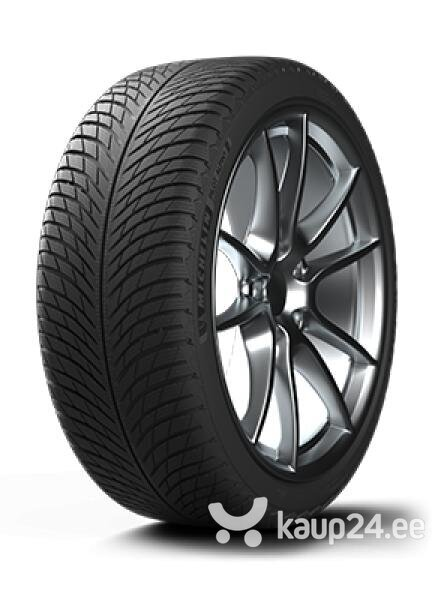 Michelin PILOT ALPIN 5 EU Lamell 255/40R20 101WW
