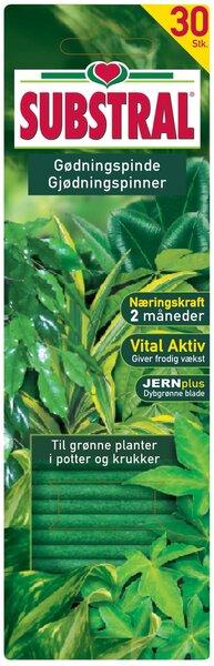Väetisepulgad rohelistele taimedele Substral, 30 tk цена и информация | Kuiv väetised | kaup24.ee