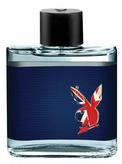 Туалетная вода Playboy London edt 100 мл цена и информация | Туалетная вода Playboy London edt 100 мл | kaup24.ee