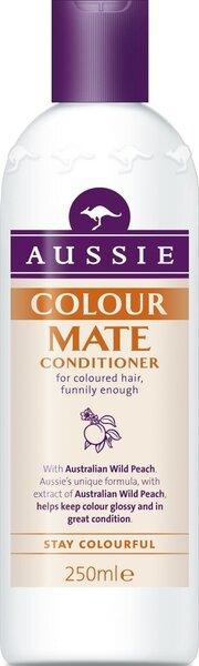 Palsam AUSSIE Color Mate, 250 ml цена и информация | Juuksepalsamid | kaup24.ee