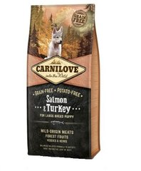 Kuivtoit koertele Carni Love Salmon & Turkey Puppy Large Breed 12kg