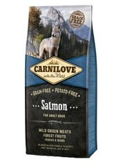 Kuivtoit koertele Carni Love Salmon for Adult 12kg