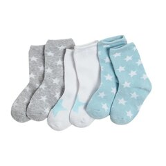 Poiste sokid Cool Club, 3 paari, CHB2202049-00 hind ja info | Imikute sokid ja sukkpüksid | kaup24.ee