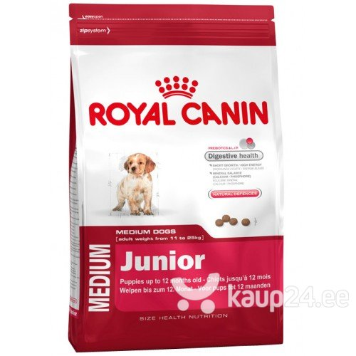 Kuivtoit koertele Royal Canin Medium Junior 15 kg цена и информация | Kuivtoit koertele | kaup24.ee