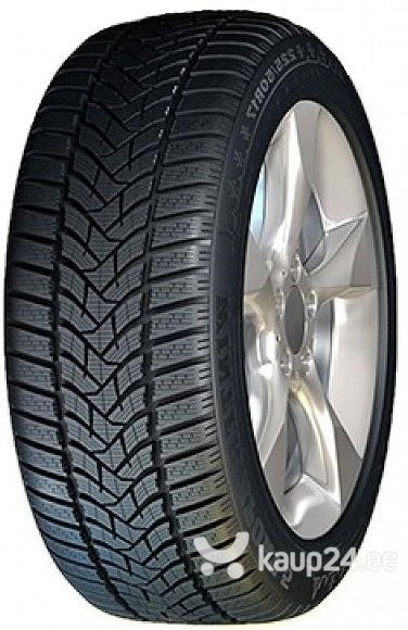 Dunlop SP Winter Sport 5 255/50R19 107 V XL цена и информация | Rehvid | kaup24.ee