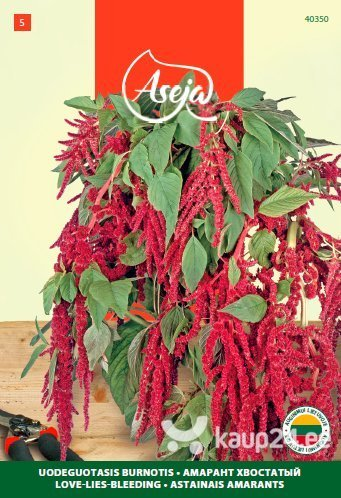 Longus rebashein /Love-Lies-Bleeding/, ASEJA, 1,5g, 40350( 5 ) цена и информация | Lilleseemned | kaup24.ee