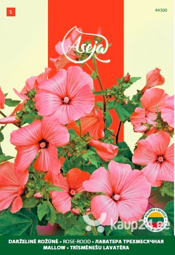 Aed-rõngaslill /Mallow/ Rose rood, ASEJA, 1g, 44300( 5 ) цена и информация | Lilleseemned | kaup24.ee