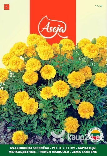 Peiulill /French Marigold/ Petite yellow, ASEJA, 1g, 47750( 5 ) цена и информация | Lilleseemned | kaup24.ee