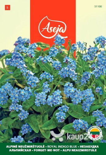 Mets-lõosilm /Forget Me Not/ Royal indigo blue, ASEJA, 0,5g, 51100( 5 ) цена и информация | Lilleseemned | kaup24.ee