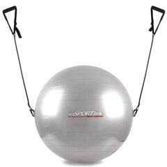 Võimlemispall inSPORTline käepidemetega 55 cm