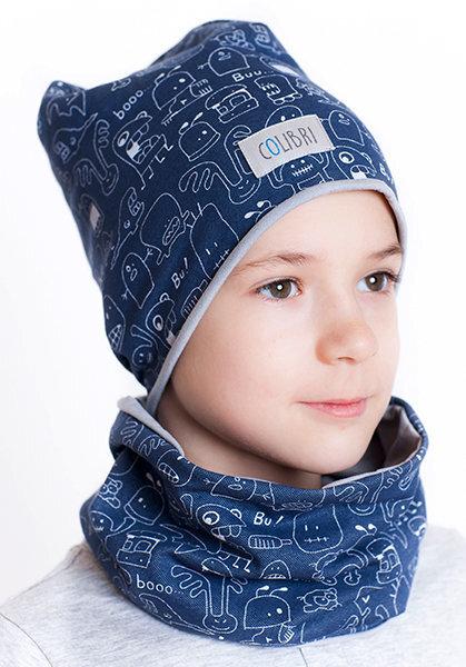 Poiste müts ja sall Colibri, sinine/hall III цена и информация | Laste aksessuaarid | kaup24.ee