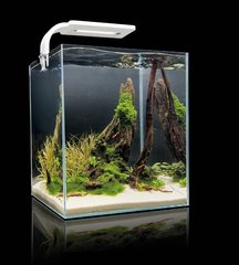 Akvaarium SHRIMP SET SMART 30 White, valge