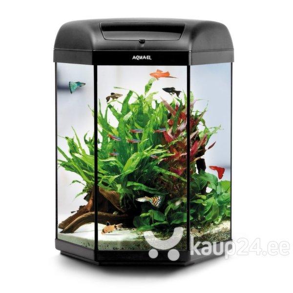 Akvaarium Hexa Set 60 Black цена и информация | Akvaariumid ja seadmed | kaup24.ee
