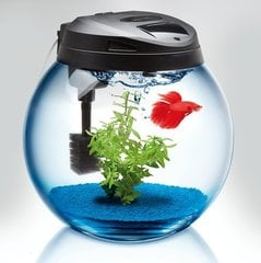Akvaarium CLASSIC SPHERICAL TANK 45