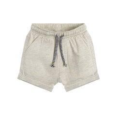 Poiste lühikesed püksid Cool Club, CCB2201830 hind ja info | Imikute lühikesed püksid | kaup24.ee