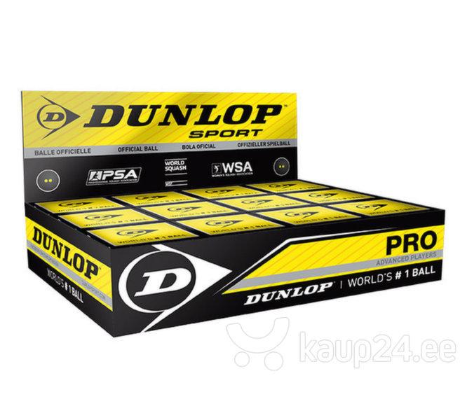 Squashipallid Pro 12-box цена и информация | Tennis | kaup24.ee