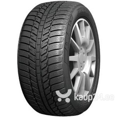 EVERGREEN YW51 225/55 R16 99H XL цена и информация | Rehvid | kaup24.ee