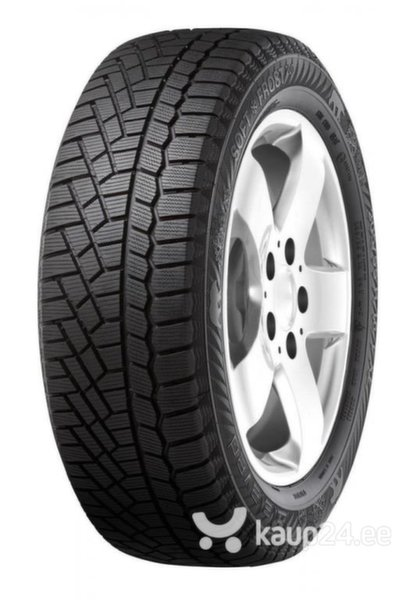 Gislaved SoftFrost 200 195/65R15 95 T XL цена и информация | Rehvid | kaup24.ee