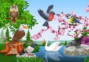 Puidust pusle Linnud, 41520