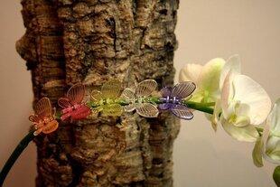 Orhideede kinnitusvahendid, 5tk
