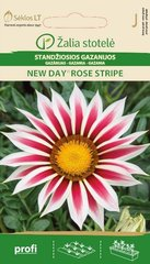 Газания NEW DAY®ROSE STRIPE