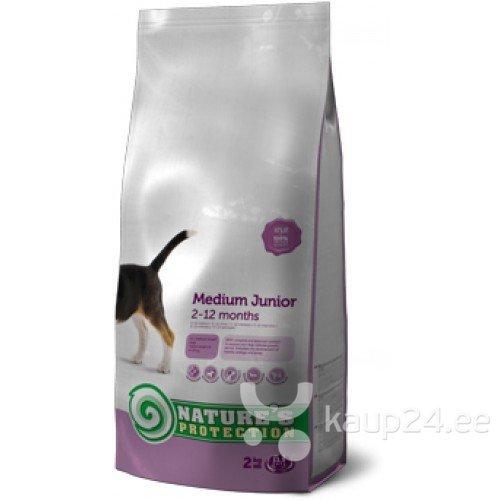 NATURES PROTECTION SP Medium Junior 0,5 kg цена и информация | Kuivtoit koertele | kaup24.ee