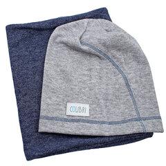 Комплект шапка и шарф для детей Colibri VK145
