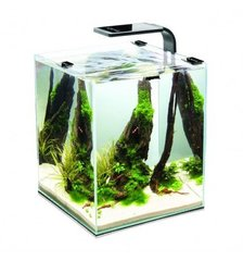 Akvaarium SHRIMP SET SMART 2 20 Black