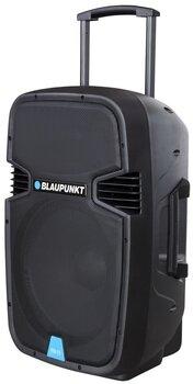 Профессиональная аудиосистема Blaupunkt PA15
